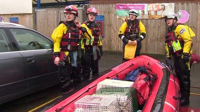 RSPCA rescue team with boat full of cages and equipment