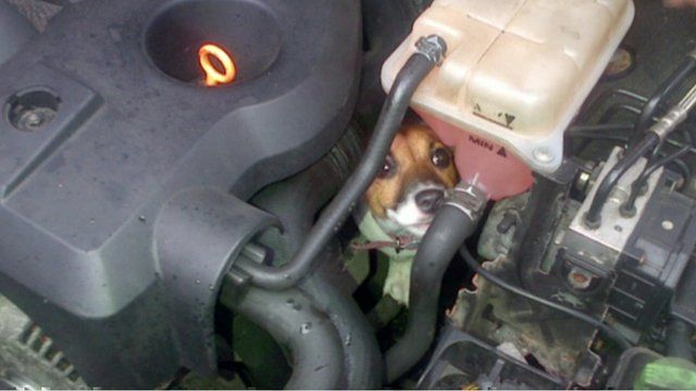 Betty in engine