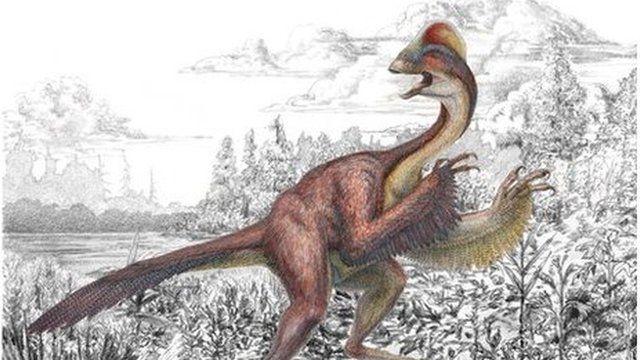 Anzu wyliei: A new dinosaur discovery
