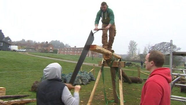 New Forest skills project