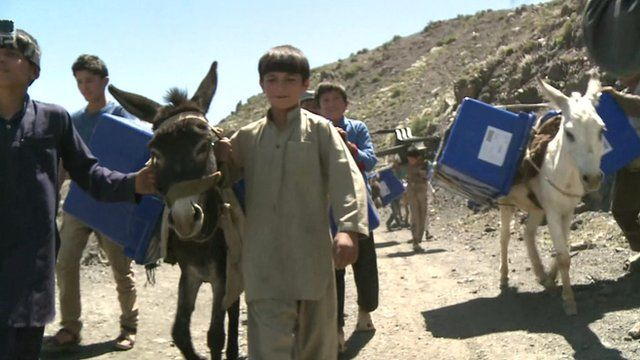 Child walks donkey loaded with election material
