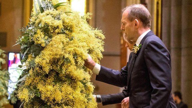 Australian Prime Minister Tony Abbott and wattle blossoms