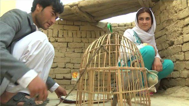 Zakia and Mohammad Ali