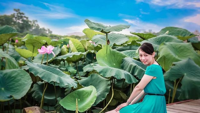 A young woman poses for the camera in a lotus garden in Hanoi, Vietnam