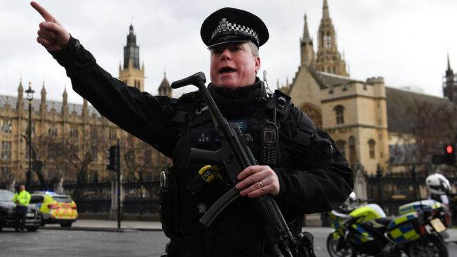 Armed policeman at Westminster