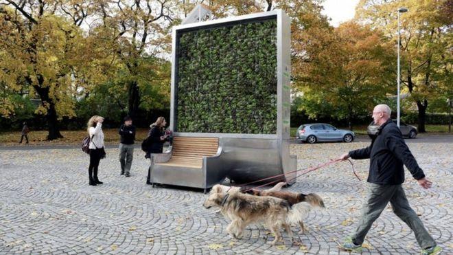 El árbol creado en Alemania que absorbe la contaminación del aire en la ciudad como si fuese un pequeño bosque