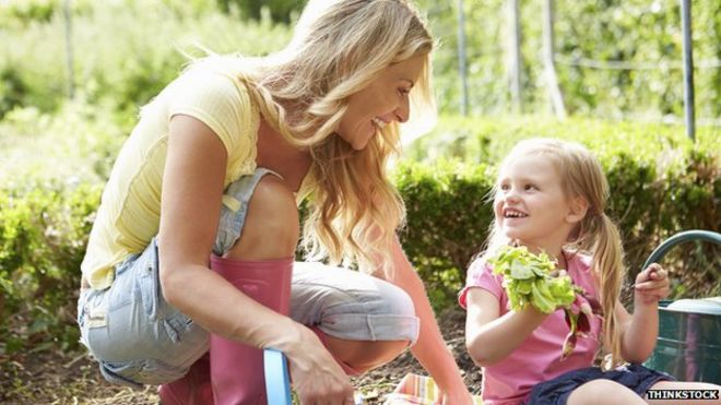 Allotment gardening 'can boost mental well-being'