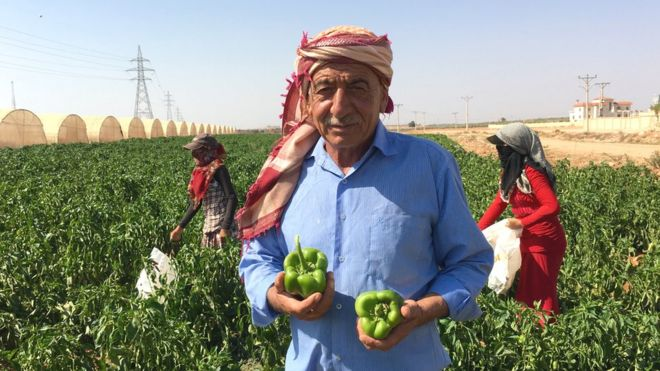 Jordanian reversal on Syrian work permits starts to bear fruit