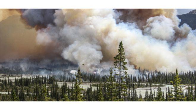 Incendio forestal en Alberta, Canadá