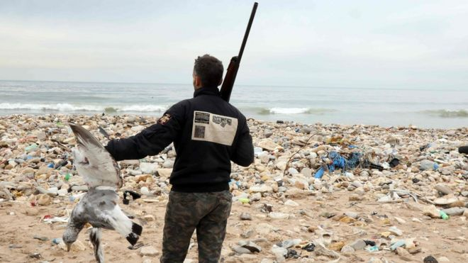 """Hunters shoot down seagulls that are attracted by the garbage at the Costa Brava dump, on January 14, 2017 near Beirut""""s International Airport"""