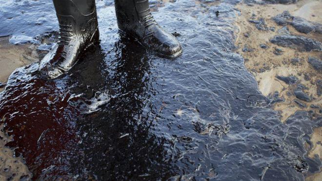 Resultado de imagen para La innovadora esponja que absorbe petróleo que puede ser la solución para los derrames de crudo