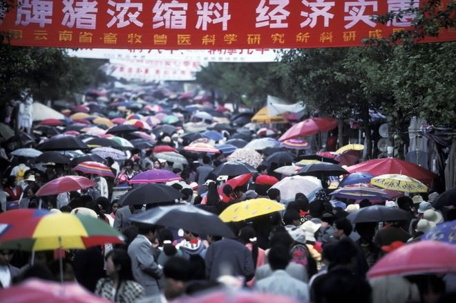 People attending a festival in China hold umbrellas