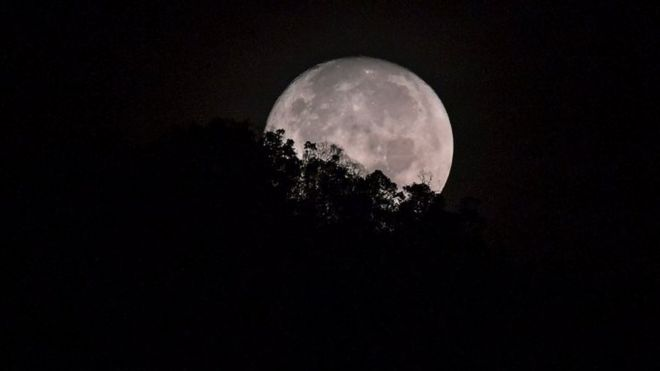 The Moon sets behind trees. File photo