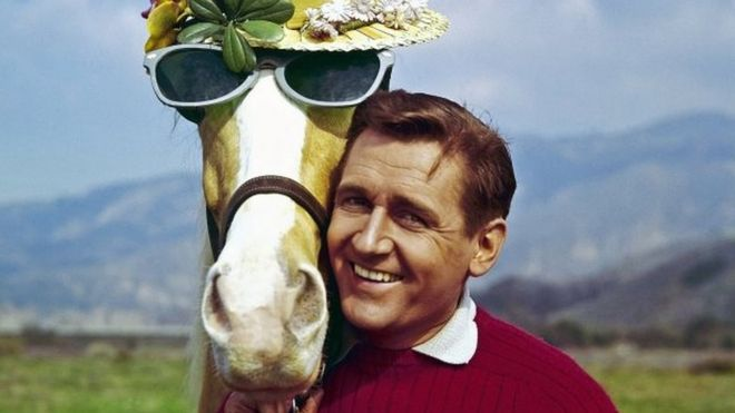 Alan Young and Mr Ed, the talking horse. Photo: March 1962