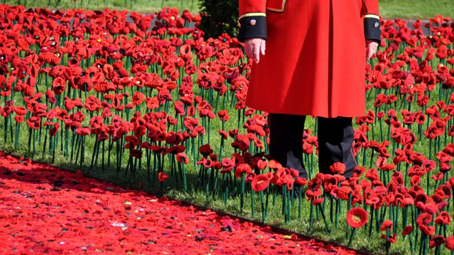 Chelsea Flower Show 2016: '5000 poppies' crochet display at the barracks