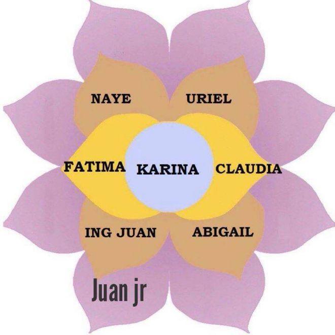 Esquema gráfico de la flor de la abundancia