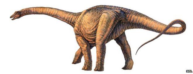 أكبر ديناصور اكتشافه