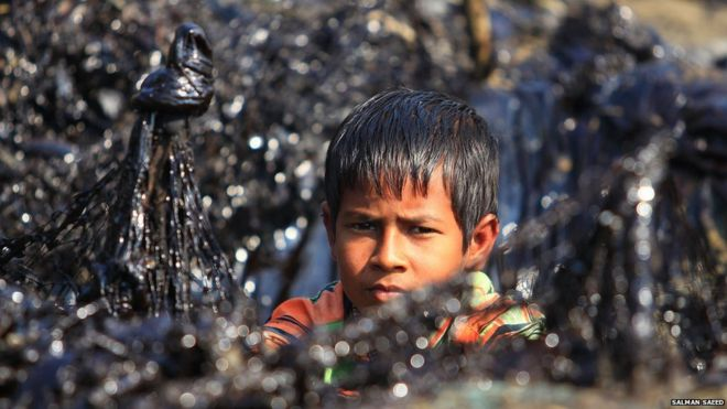 A child near oil-covered plants