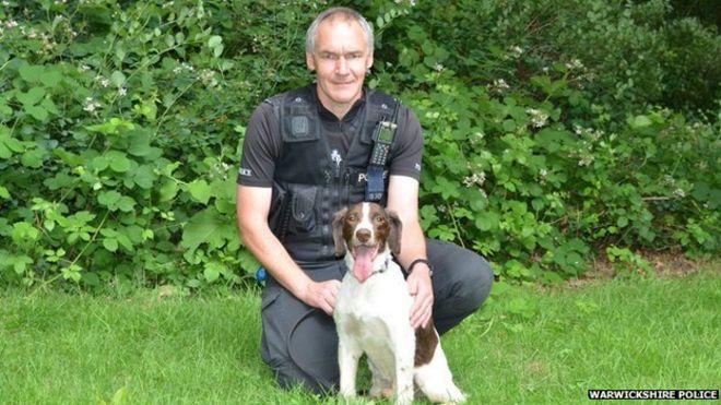 Police Springer Spaniel awardedd posthomous 'OBE' _82622642_pcandycrouchandpdjake