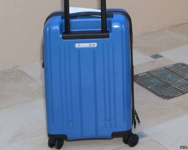 Largest bag under IATA guidelines