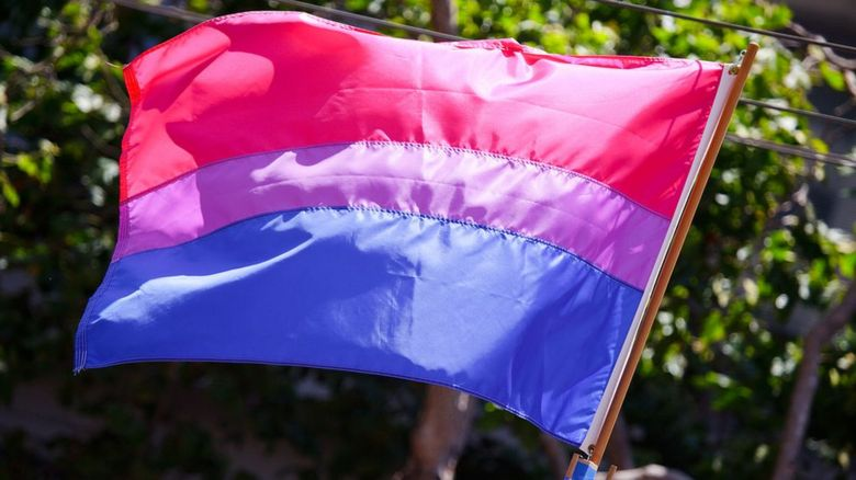 The Bisexual flag