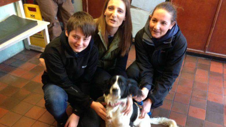 Bella the was reunited with her family at the vets in Bristol today