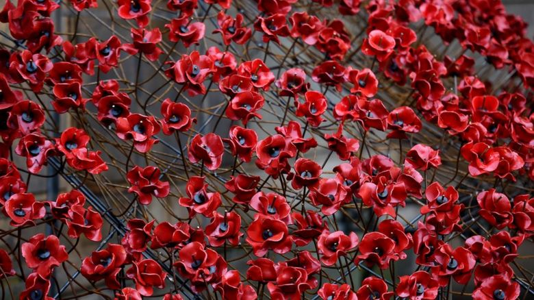 Ceramic poppies
