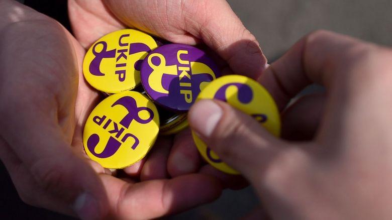 Hands holding UKIP badges