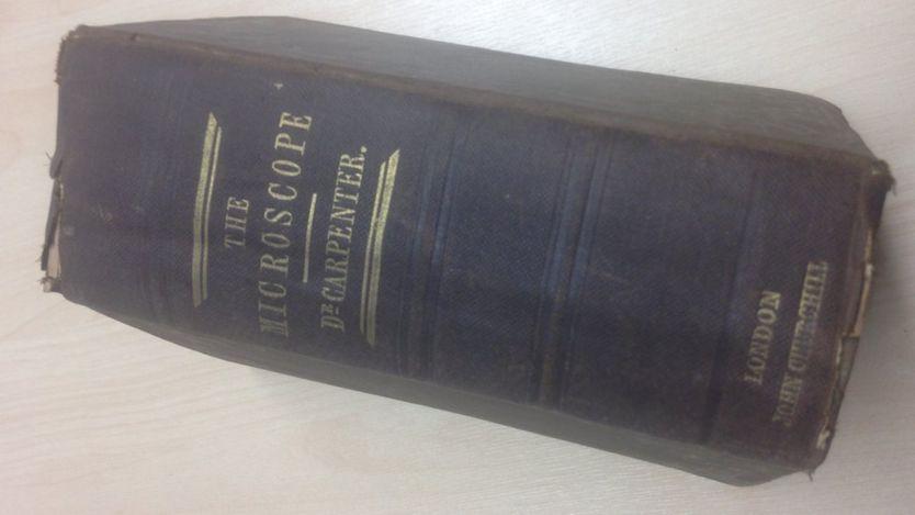 Вбританскую библиотеку лет вернули книгу спустя 120 лет