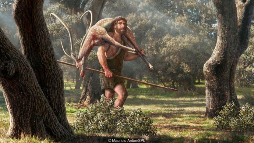 Neanderthals needed protection from the cold