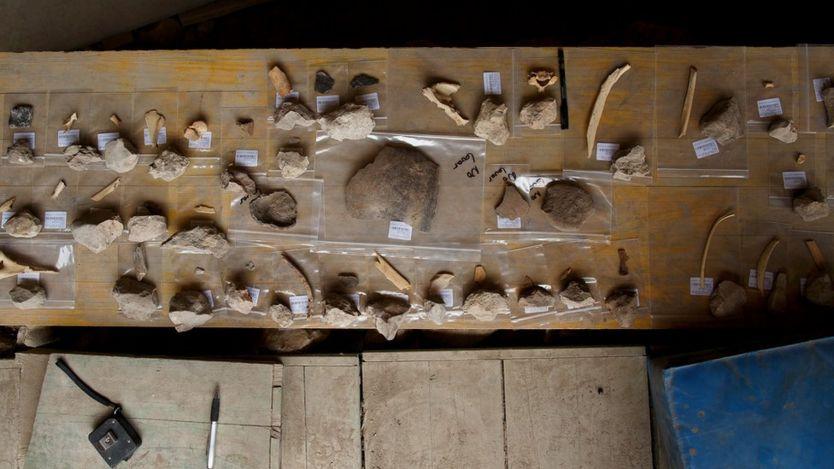 Tư thế đứng thẳng khiến đôi tay của người cổ đại được giải phóng, từ đó sử dụng được các công cụ thô sơ