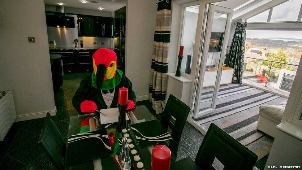 The parrot wait for his hot date to dine