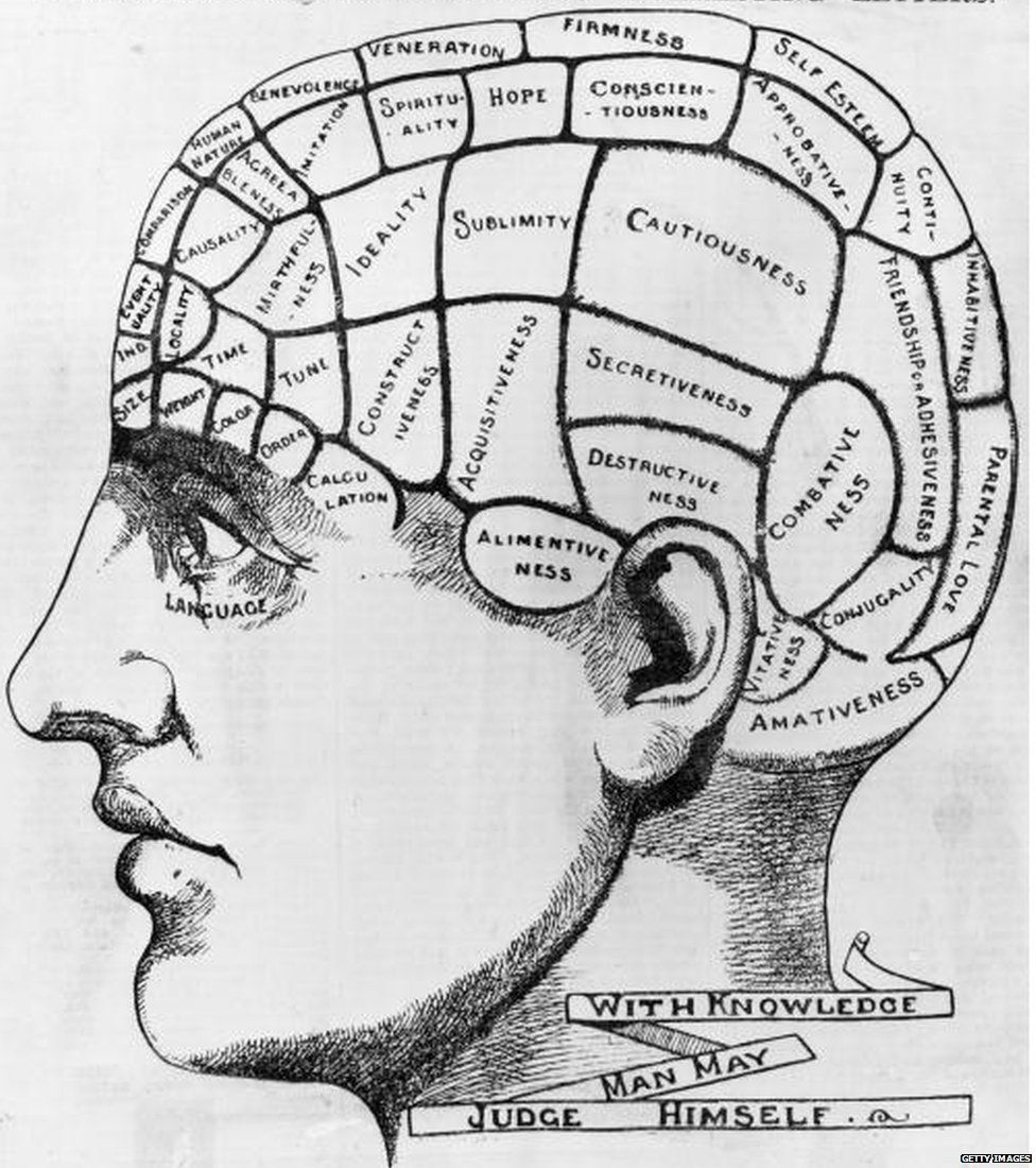 circa 1880: A phrenological cross-section of a man's head, illustrating the idea that the brain processes thoughts in different locations according to their type