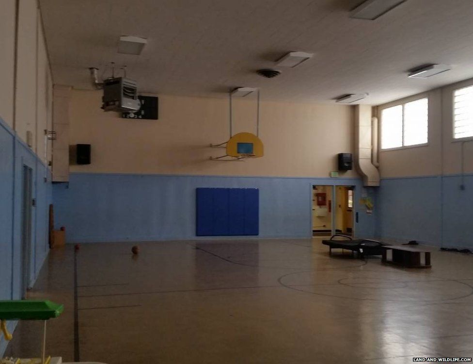 The gym from Tiller's primary school
