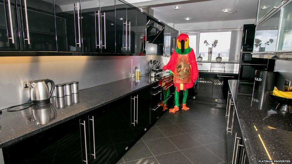 The parrot chirps up about his great cooking