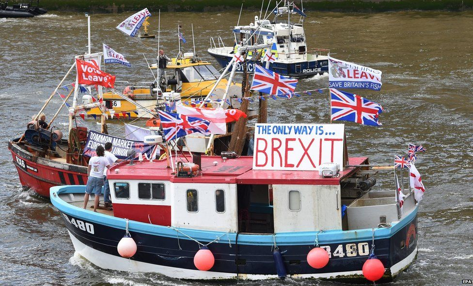 The Brexit flotilla in the Thames