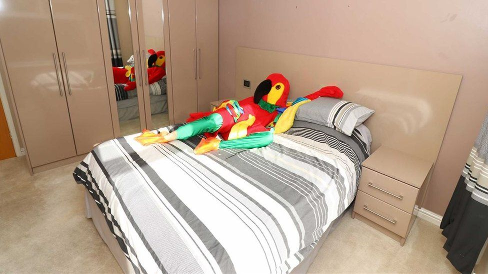 The parrot chills out in his spacious double bedroom