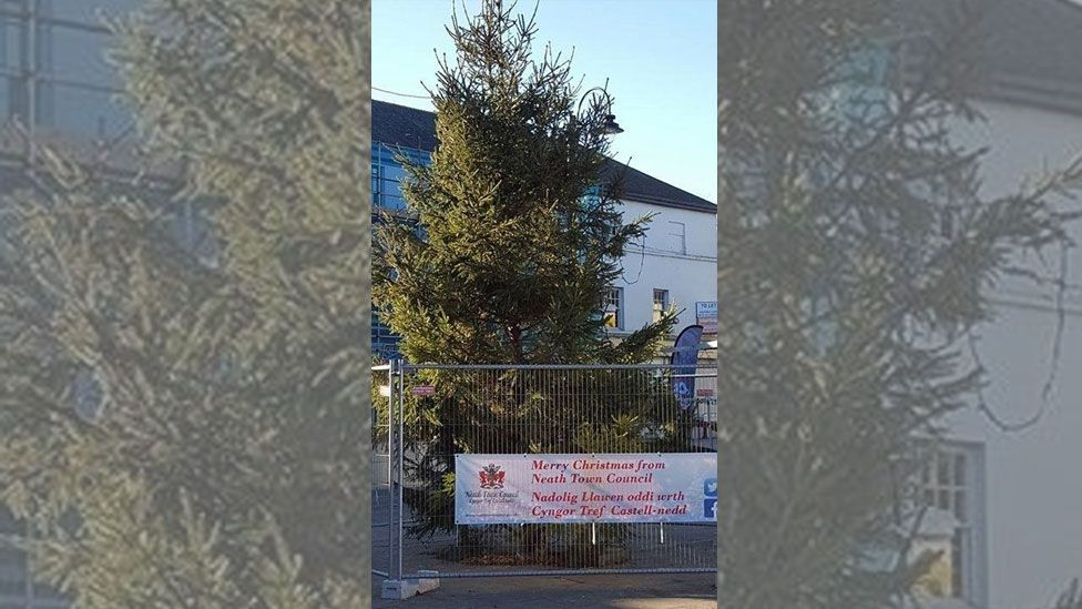 Are these Britain's worst Christmas trees? - BBC Newsbeat