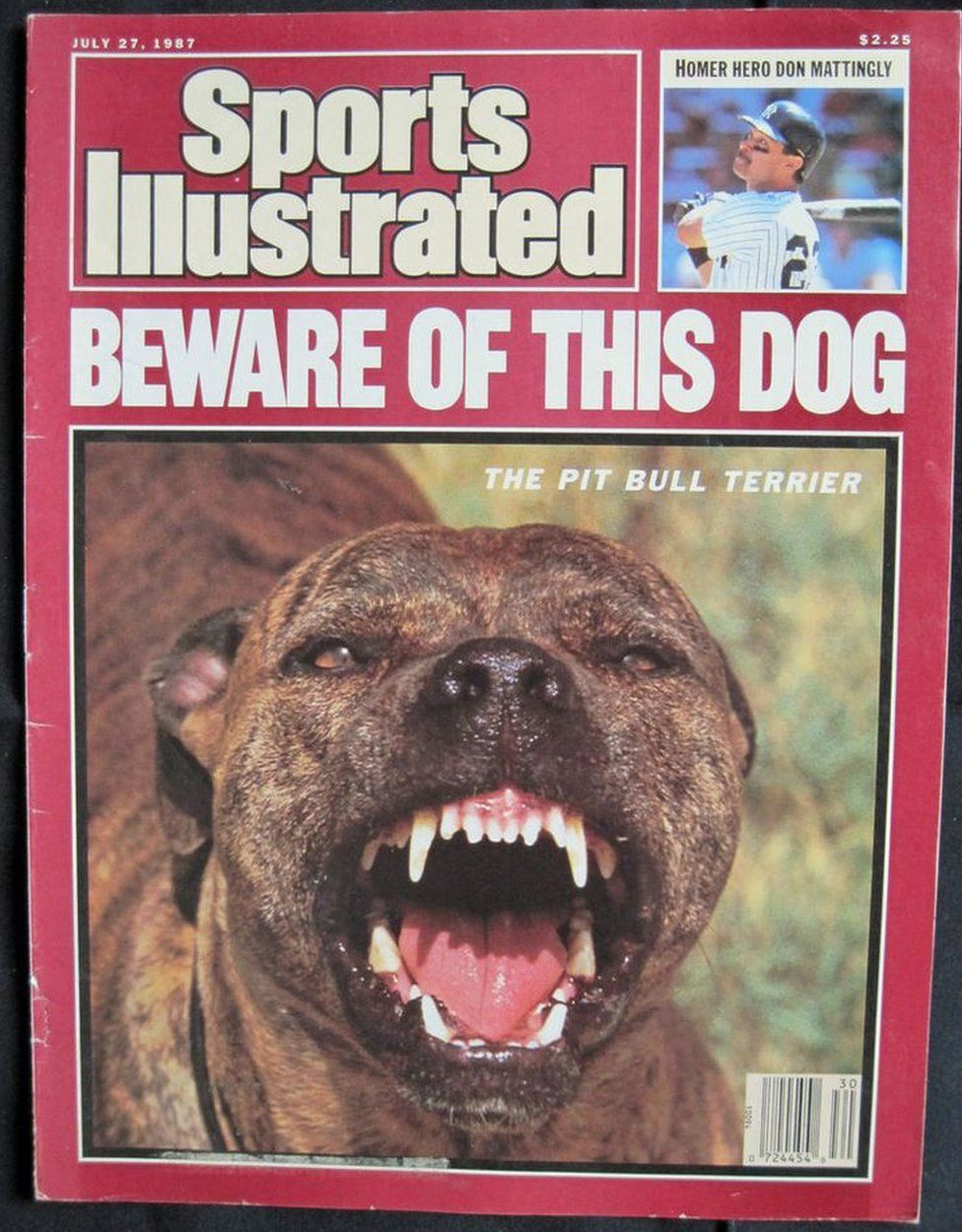 A short history of the dangerous dog and why certain breeds are sports illustrated front cover nvjuhfo Choice Image