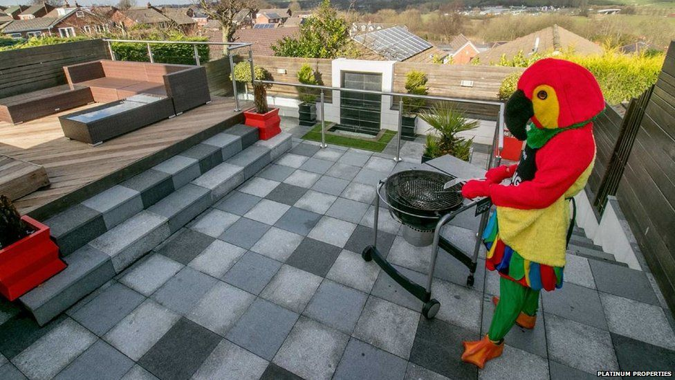 The weather is warming up, it can only mean a BBQ for the parrot