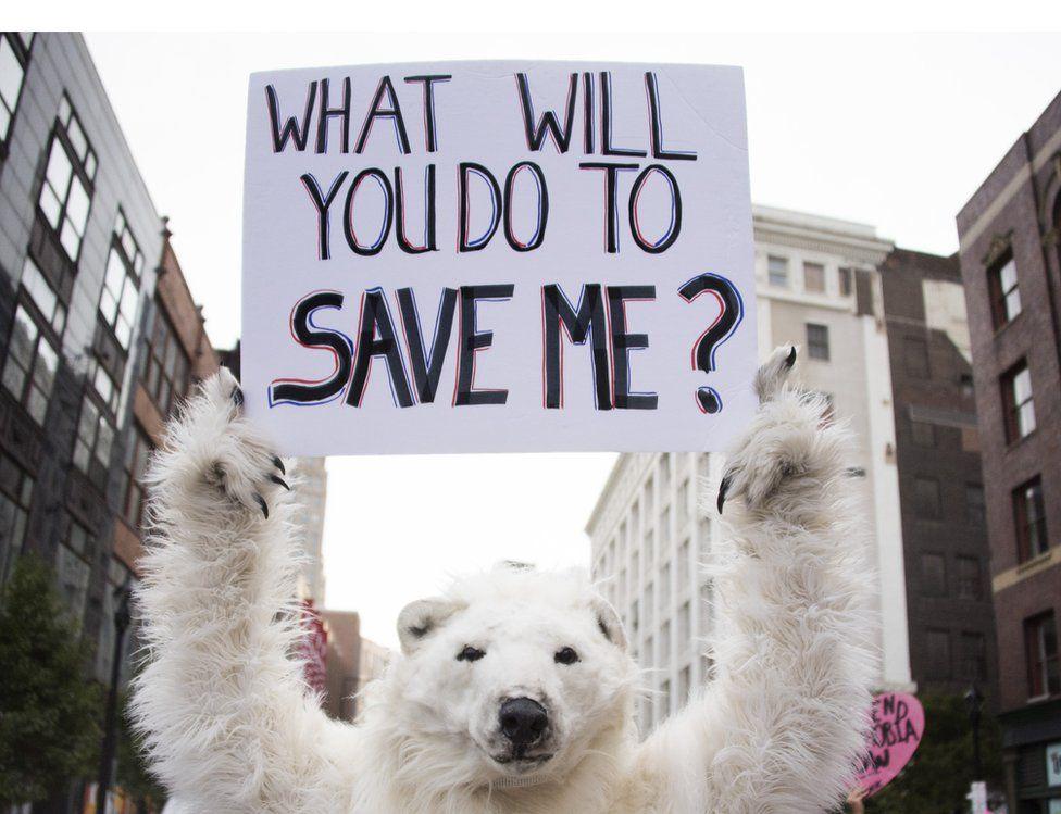 Protestor dressed as a polar bear