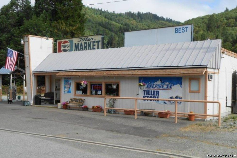 The general store in Tiller, Oregon
