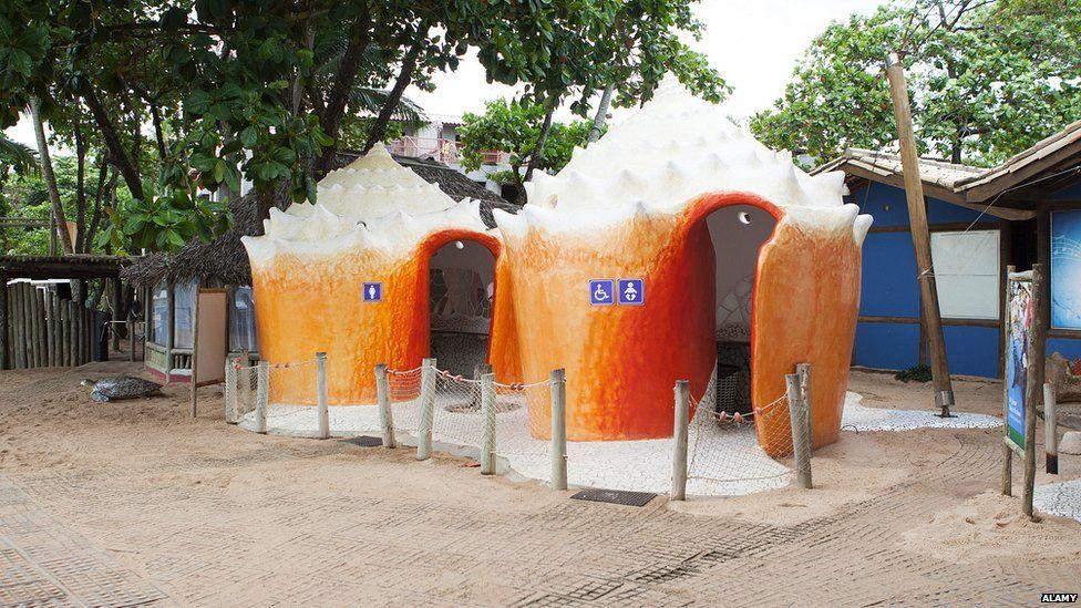 Toilets in Bahia, Brazil