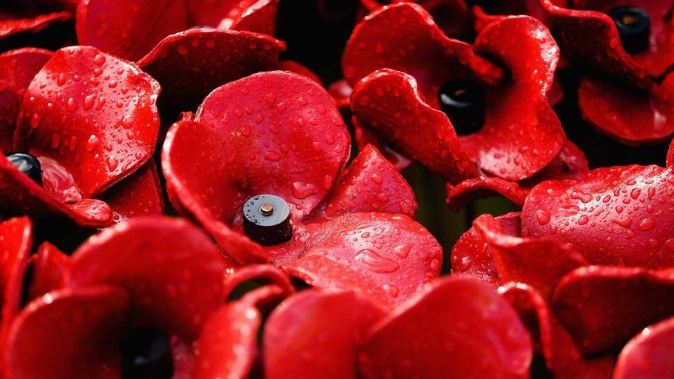 Remembrance Poppy Controversies And How To Wear It Bbc Newsbeat