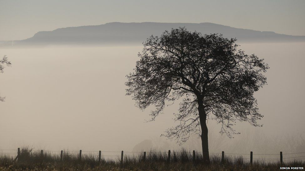 Fog shrouds mountains. A bare tree can be seen in the foreground