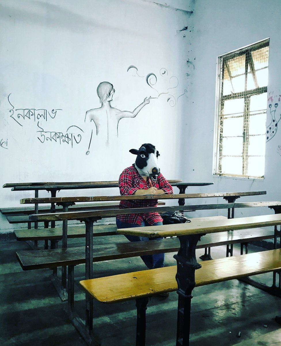 A woman with a cow mask in a college classroom