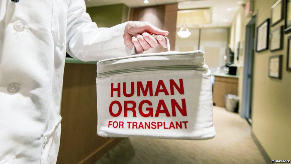 A medical bag labelled 'human organ for transplant'