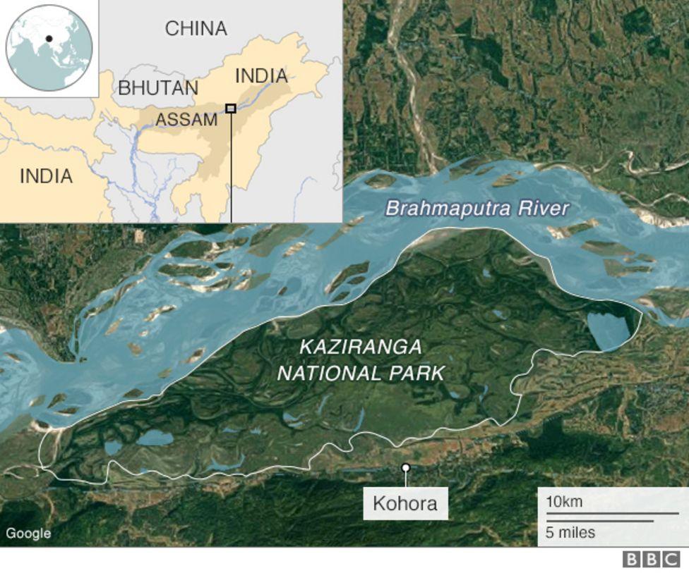 Lokasi Taman Nasional Kaziranga