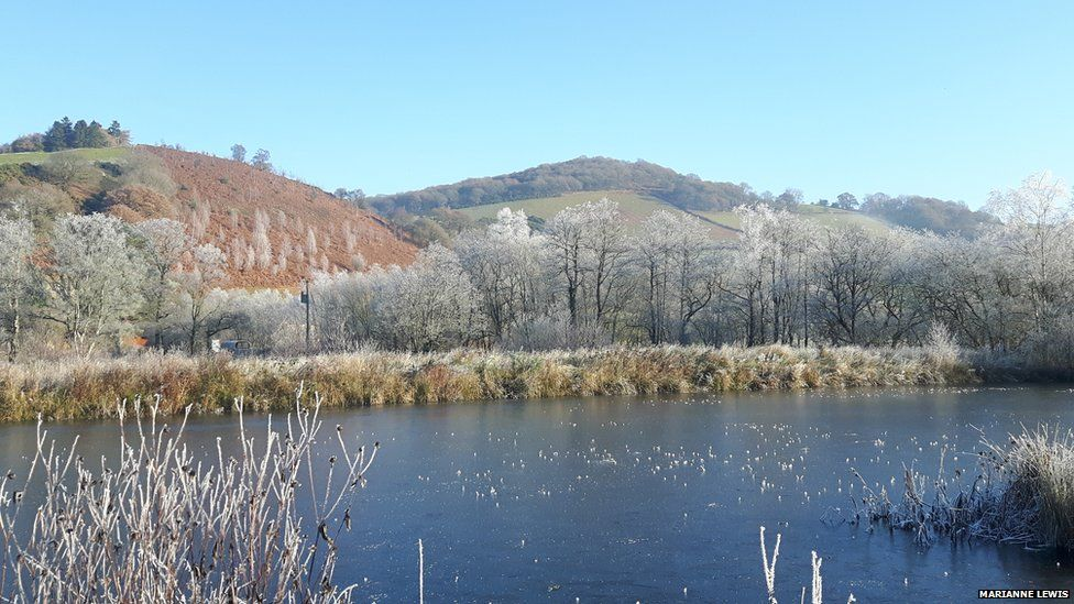 Frost coated trees by a lake on a bright day