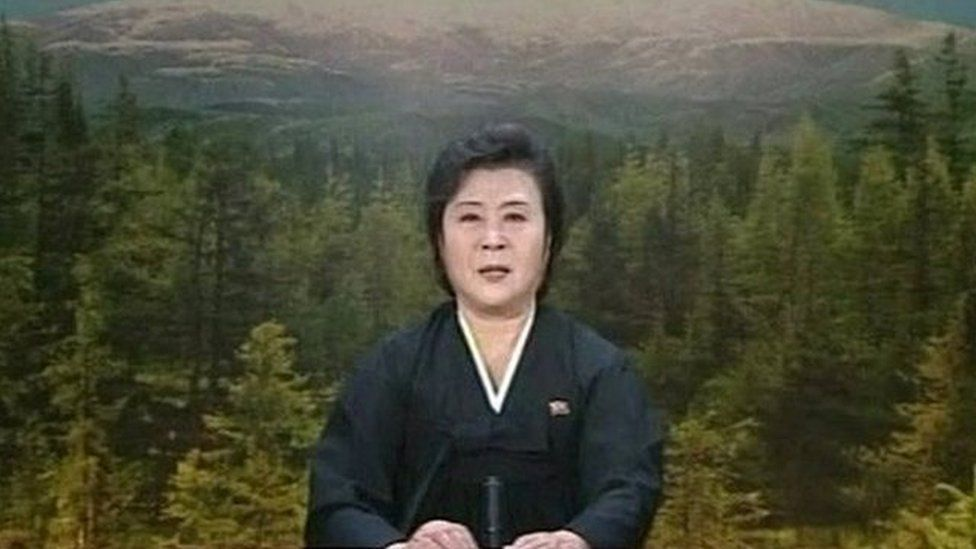 State-run TV announcer